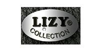 InfoSoft_Office_Lizy